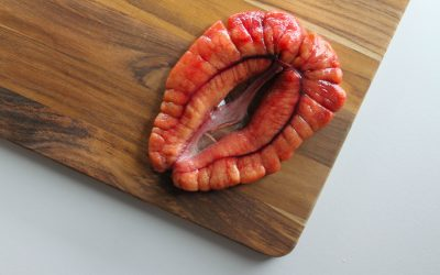 Shad Roe: What is it?