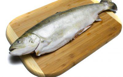 Arctic Char:  The Salmon Look Alike