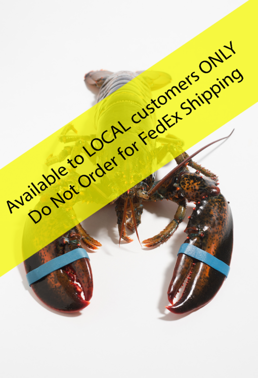 Soft Shell Lobster